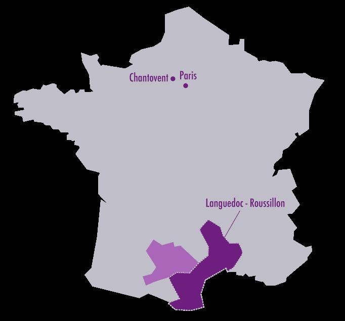 caves du Minervois - vins Languedoc Roussillon